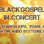 29 november 2015 - Black gospel (Small)